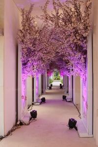 Koridor tree
